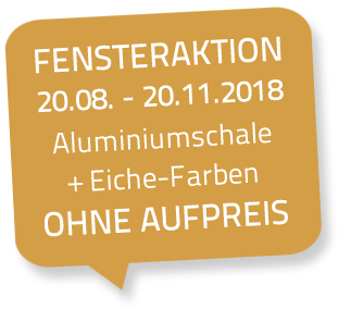Fensteraktion